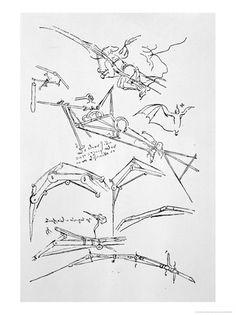 Giclee Print: Sketches, Studies & Drawings Poster by Leonardo da Vinci : Framed Artwork, Wall Art Prints, Canvas Prints, Canvas Paintings, Framed Canvas, Drawing Sketches, Drawings, Cool Posters, A0 Poster