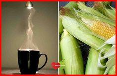 2 Bebidas Poderosas que ajudam a Eliminar o colesterol, combate o Envelhecimento e Proteger o Coração. Além disso, o Milho contém diversos benefícios.