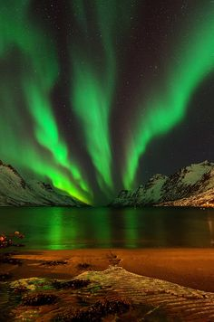 ~~nightsky in Ersfjordbotn ~ epic aurora borealis, Tromso, Norway by John A. Hemmingsen~~