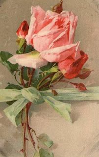Catherine Klein ~ pink roses tied with a bow