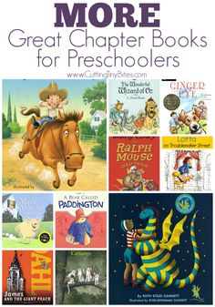 MORE Great Chapter Books for Preschoolers.  Whether you are just starting to read chapter books to your kids or have a more experienced listener, you'll find some excellent choices here for 3, 4, and 5 year olds!  Brief reviews of each.