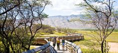 Maui special needs travel tips