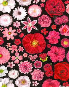 Bloominescent - Vivid Floral - DIGITALLY PRINTED COMBED COTTON - Quilt Fabrics from www.eQuilter.com