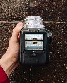 Patrick McCormack's (@patrick.mccormack) Hasselblad 500CM loaded with Kodak…