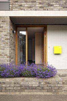 Gallery of No. 49, Lewisham / 31/44 Architects - 4