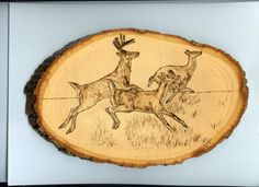 Woodburning - Deer