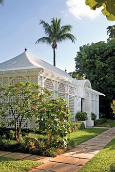 The Orchid House | Garden and Gun produced and edited by Haskell Harris photographed by Amy Mikler written by Susan Stiles Dowell  #palmbeach #kitpannill