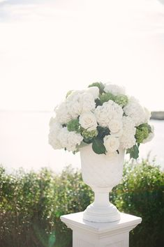 Roses + Hydrangeas -- totally classic and beautiful!!