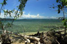 cahuita national park attraction page coast - Costa Rica