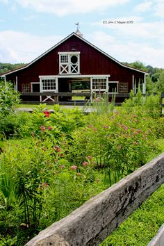 Rain gardens near livestock facilities can help prevent nutrient runoff and beautify your farm at the same time, all while providing much needed pollinator habitat..