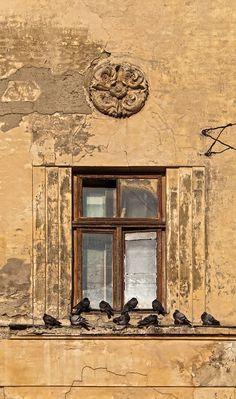 .Lviv, Ukraine.             t