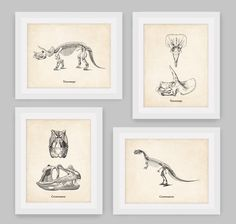 Set of 4, Dinosaur Set, Shipped Prints, Dinosaur Skeleton, Prehistoric, Paleontology, Fossil, Boys Bedroom, Office Decor, Home Decor by BusyBeeDesignCrafts on Etsy https://www.etsy.com/ca/listing/525600461/set-of-4-dinosaur-set-shipped-prints