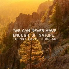 Never enough of nature                                                                                                                                                                                 More