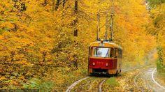 Fall in Kyiv, Ukraine Carpathian Mountains, Ways To Travel, Public Transport, Europe, City, Nature, Beautiful, Autumn, Fall