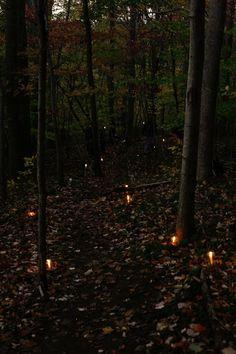 Candlelit path.