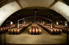 Picture of the Mondavi Winery Cellars . . . wine, wine, GLORIOUS wine!