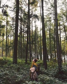 "(@evewanders) on Instagram: ""Always looking up to the sky  Shot for @astilllife_workshops"""