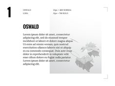 [4 different google font combinations] on Behance