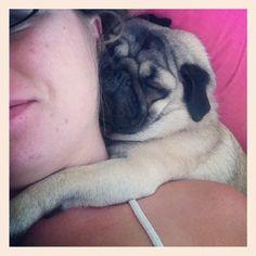 Pug snuggles!