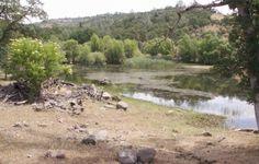Oasis Springs Ranch, at FarmandRanch.com