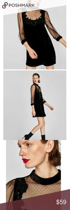 Weekend sale! Zara velvet dress( PRICE IS FIRM ) Stunning. Brand new  Reduced from $ 69. NO OFFERS Zara Dresses