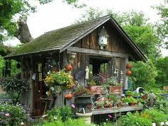 Planting Shed