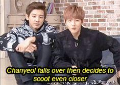#Baekyeol xD (GIF) ~ awwn xd that fall is too cute ♡ haha