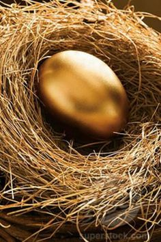 Black and Gold / Golden Egg in Nest Gold Everything, Or Noir, Gold Aesthetic, Shades Of Gold, Stay Gold, Touch Of Gold, All That Glitters, Beltane, Mellow Yellow