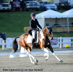Philippa Humphreys rode the flashy Rich N Famous in the CCI***. Photo by Lindsay Berreth. 10 Highlights From The First Day Of Fair Hill | The Chronicle of the Horse