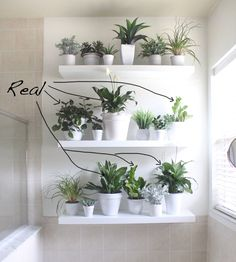 """I've wanted to do a plant wall in this bathroom for about two years and it's finally done! I have been eyeing beautiful plant walls on Pinterest, plotting and planning for this blank wall in our master bathroom. It has artificialand real plants. Here's how I did it and where I got the plants: Step… <a class=""""more-link"""" href=""""http://www.housemixblog.com/2017/03/28/plant-wall-in-the-bathroom/"""">Read More <span..."""