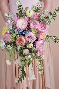 David Austen Wedding Roses 'Constance'