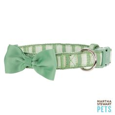 This #MarthaStewartPets #bowtie collar is perfect for #StPatricksDay or every day! Only @petsmartcorp | #dogfashion #dogcollar