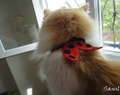 Cat collar-adjustable collar-custom collar-cat lover gift-cat accessories-ladybug-Adjustable cat collar red with Bell