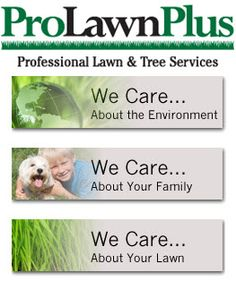 ProLawnPlus, a local lawn care company, provides lawn care as well as tree and shrub services for Maryland residents in Baltimore, Baltimore City, Baltimore County, Howard County, in addition to portions of Harford County and Carroll Counties.