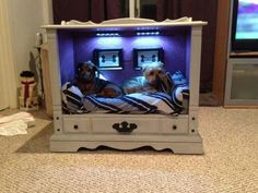 Dog bed out of an old tv console.