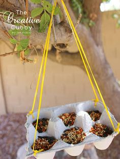 How to make Egg Carton Bird Feeder / I would use the Styrofoam egg carton in case they get wet