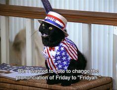Salem will always stay my favorite cat . - Imgur