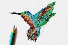 Pencil Shaving Art