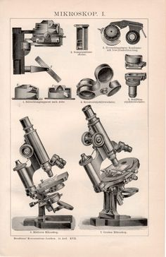 1898 Old Microscopes Antique Print Vintage by Craftissimo on Etsy