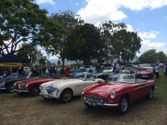 Classic cars as well as classic boats at the Tweed River Classic Boat Regatta, October.