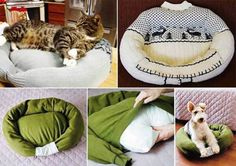 How to upcyle old sweaters into pet bed   DIY Tag