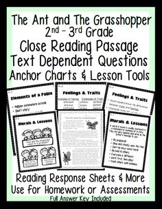 Common Core Literacy Standards RL.2 and RL.3.   - 1 Passage (with and without border for Close Reading) - 3 Assessment Sheets for passage with Text Dependent Questions aligned to Common Core Standards with Answer Key  Can be used with any passage. :-) - 6 Anchor Charts - Reading Response pages aligned to Common Core  ---- 4 for RL.2 ---- 1 for RL.3 - Reading Response pages for New Beginning, New Ending, and Interview {Use to enhance lessons on perspective or author's purpose} Reading Assessment, Reading Response, Reading Fluency, Reading Passages, Reading Strategies, Comprehension Strategies, Guided Reading, 3rd Grade Reading, Third Grade