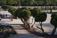 Topiary garden, Parque del Retiro, Madrid