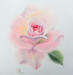 Watercolor without Drawing by LaFe Watercolor Art Lessons, Watercolor Cards, Watercolor And Ink, Watercolor Flowers, Watercolor Paintings, Plant Art, Flower Art, Painting & Drawing, Creations