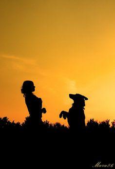 Aposte nas simplicidades e some mais momentos únicos #cachorro #retrato #fotografia