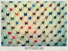Butterflies,Italy,Street .#By Devika Narain