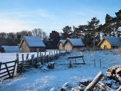 West Stow Anglo-Saxon Village December 2010