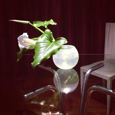 """Sinfonía en blanco... Calas en florero """"Luna"""" de Paola Navone para ARCADE. A la derecha, silla """"Jenette"""" de los hermanis Campana para EDRA."""
