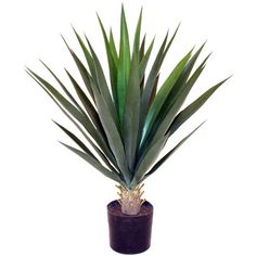 Handcrafted indoor/outdoor faux yucca plant.Product: Faux botanical arrangementConstruction Material: Plastic...
