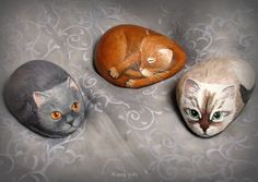 Trio cats by rock painting